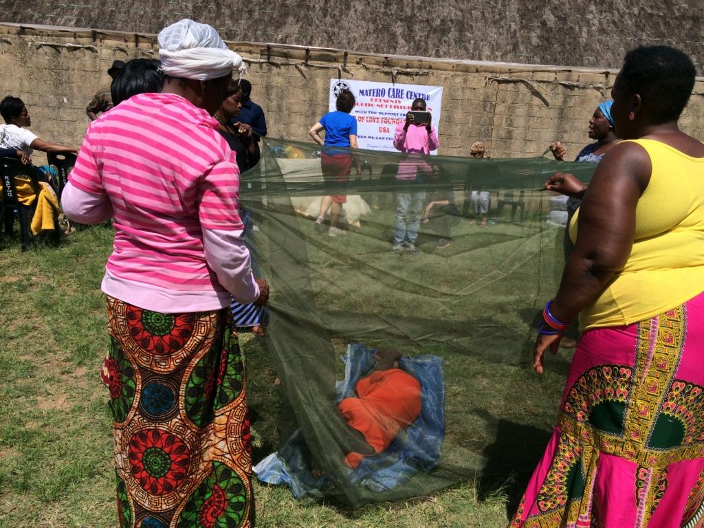 Malaria Bed Net Demo