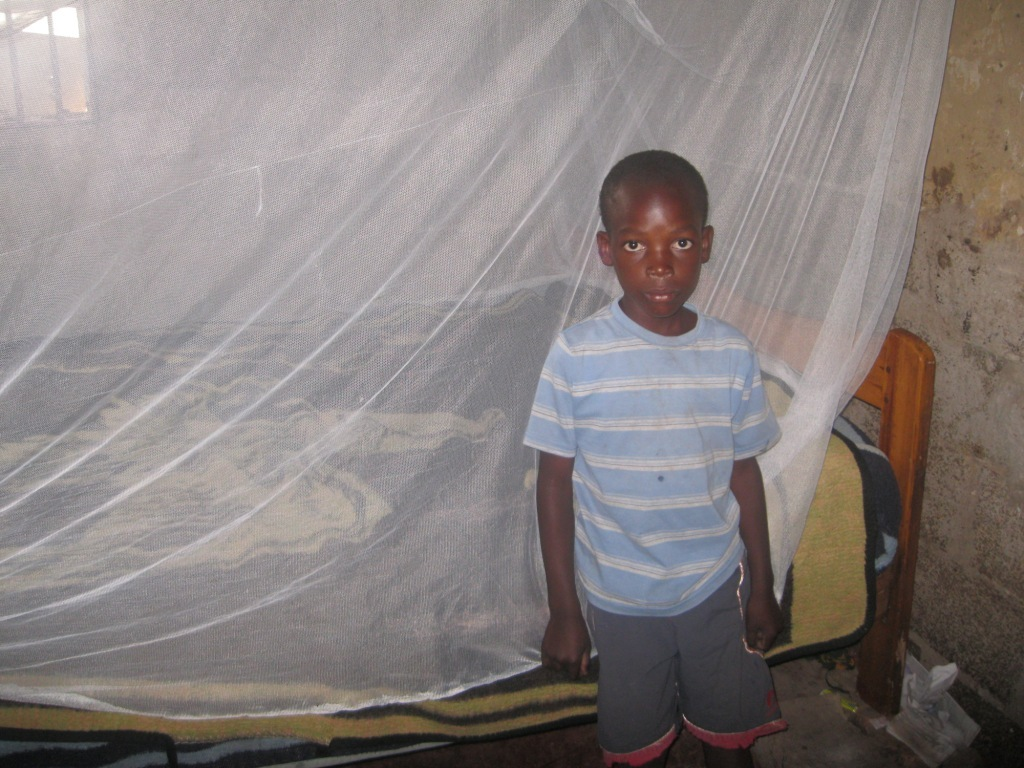 Reports on Project Mosquito Nets - GlobalGiving Project Mosquito Nets - 웹