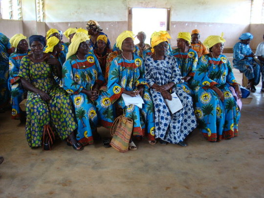 Provide Economic Sustainability to Aids widows