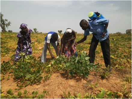 AJUBS members working in their field