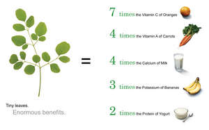 The nutritional content of Moringa leaves
