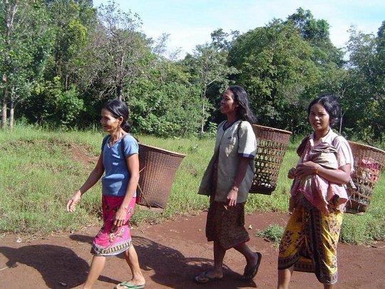 People life in Mondulkiri project1