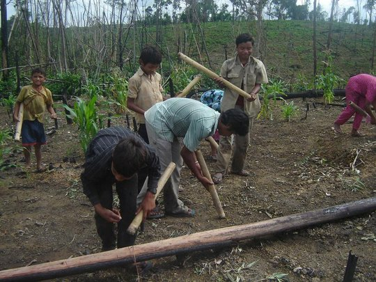 Hill rice cultivation-Minority People
