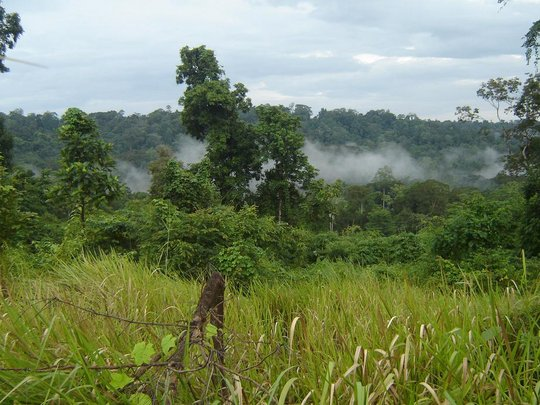 Viewing at project site during Wetseason