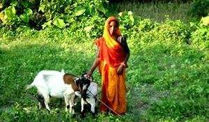 Manavi member with her goat