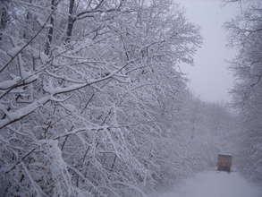 Eastern Europe Winter