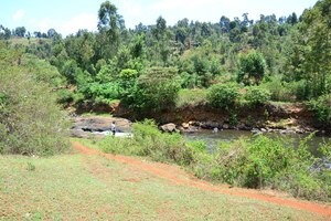 Othaya site - near the river