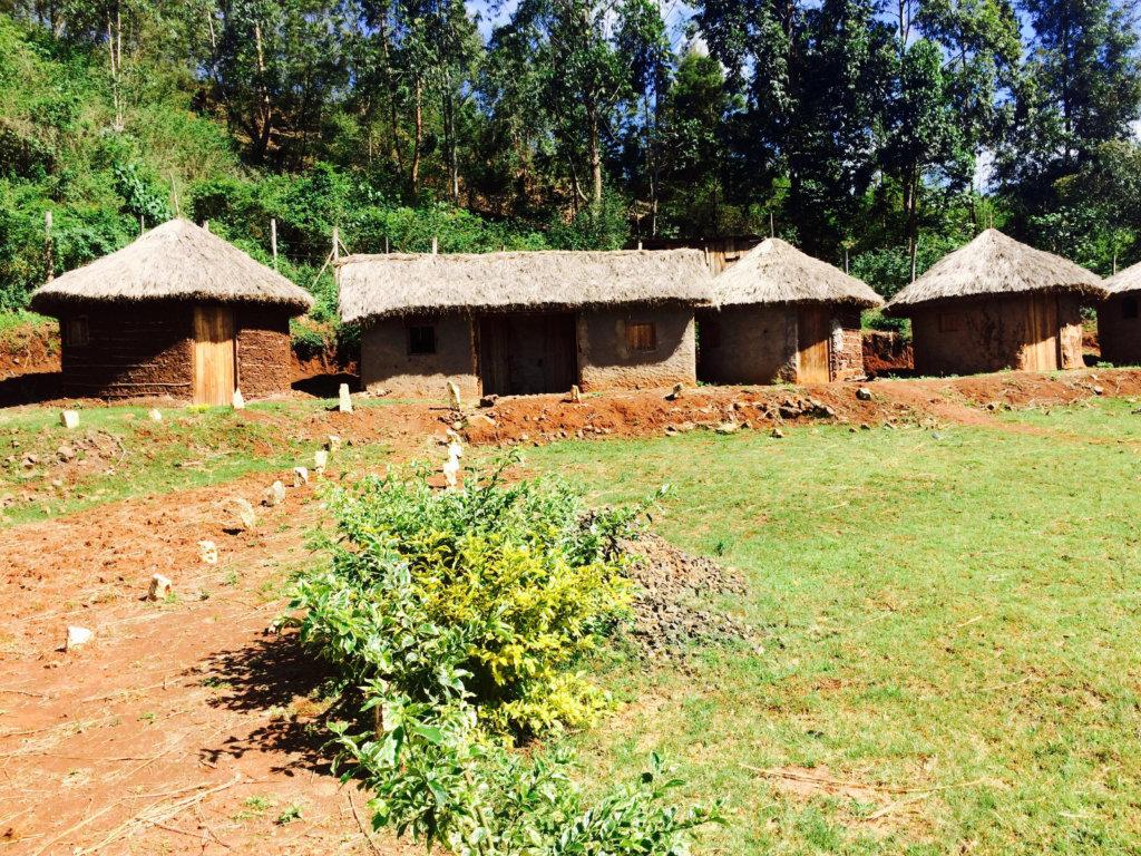 Guest huts