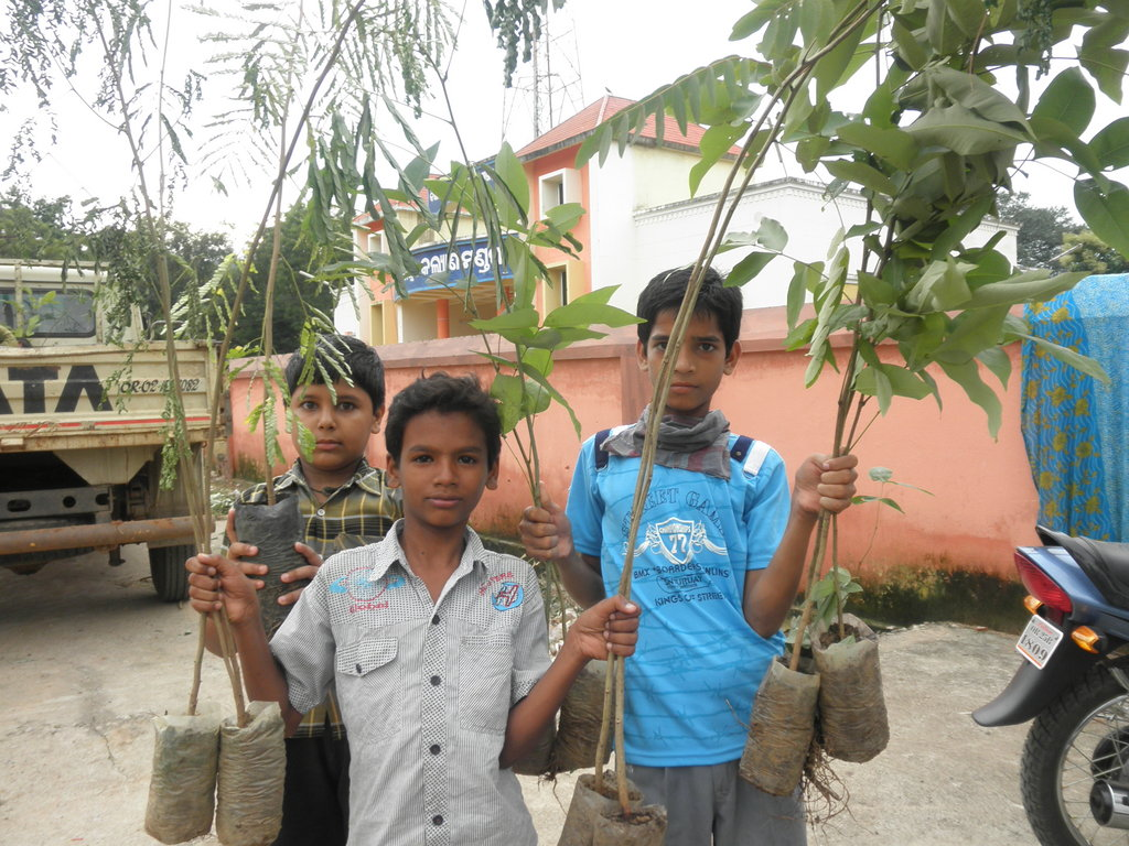 Plant native trees in 100 village in India.