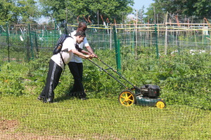 Amir mows down the overgrown garden plot