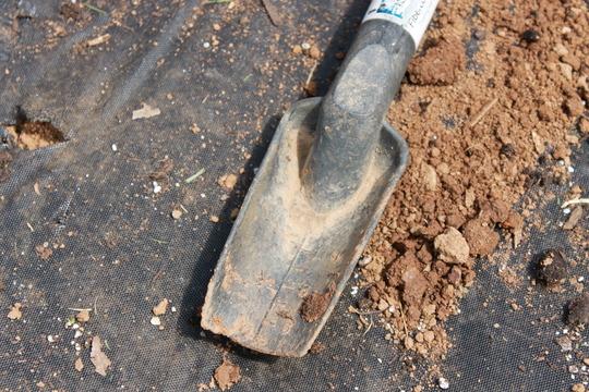 A broken trowel still digs!