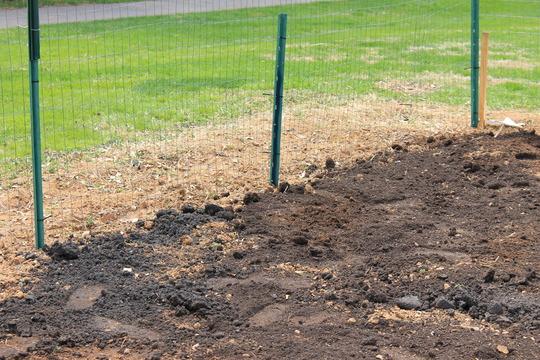 A garden plot finally ready for planting!