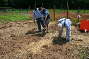 Mitch and Larry prepare the soil.