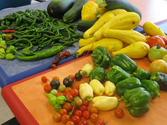 Vegetables from house and community garden plots