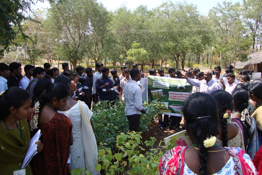 Director discusses with Youth on Agriculture
