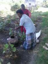 Guiding an Youth in preparing Pancha kavya