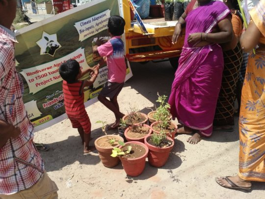 Kids enjoying arrival of new herbal plants