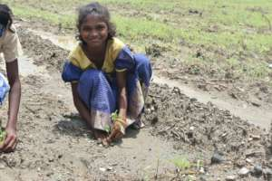 Help 1332 Youth for Agriculture in 222 villages