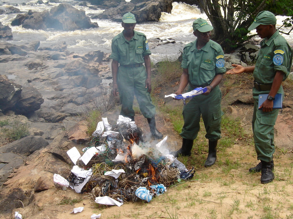 Destroying Snares Collected in the Reserve