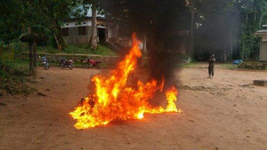 Burning Bushmeat