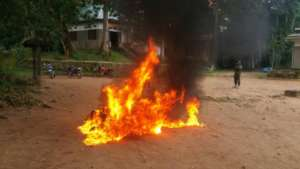 Burning Bushmeat