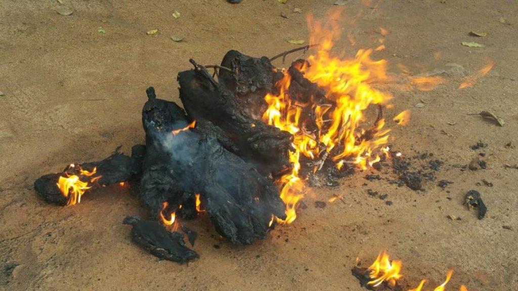 Burning Bushmeat Discourages Poaching