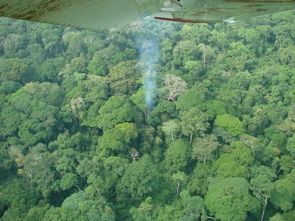 poacher camp smoke