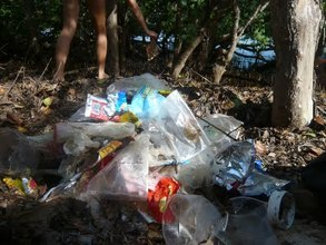 Trash collected in the Mangroves