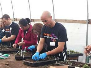 Volunteers assist with our seedling transplants