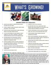 2013 Highlights (PDF)