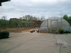 2nd hoop house.