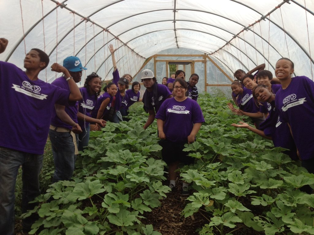 Youth Corps in hoop house full of okra at Iron St.