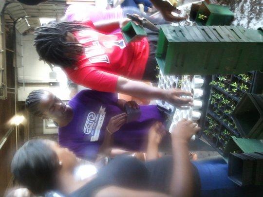 Iron Street youth transplanting