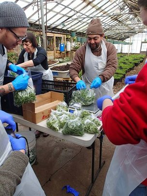 Workshop participants learn all about microgreens