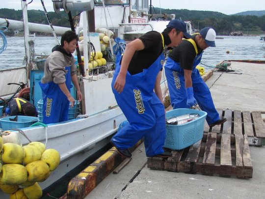 Restoring livelihoods in Japan by Peace Winds
