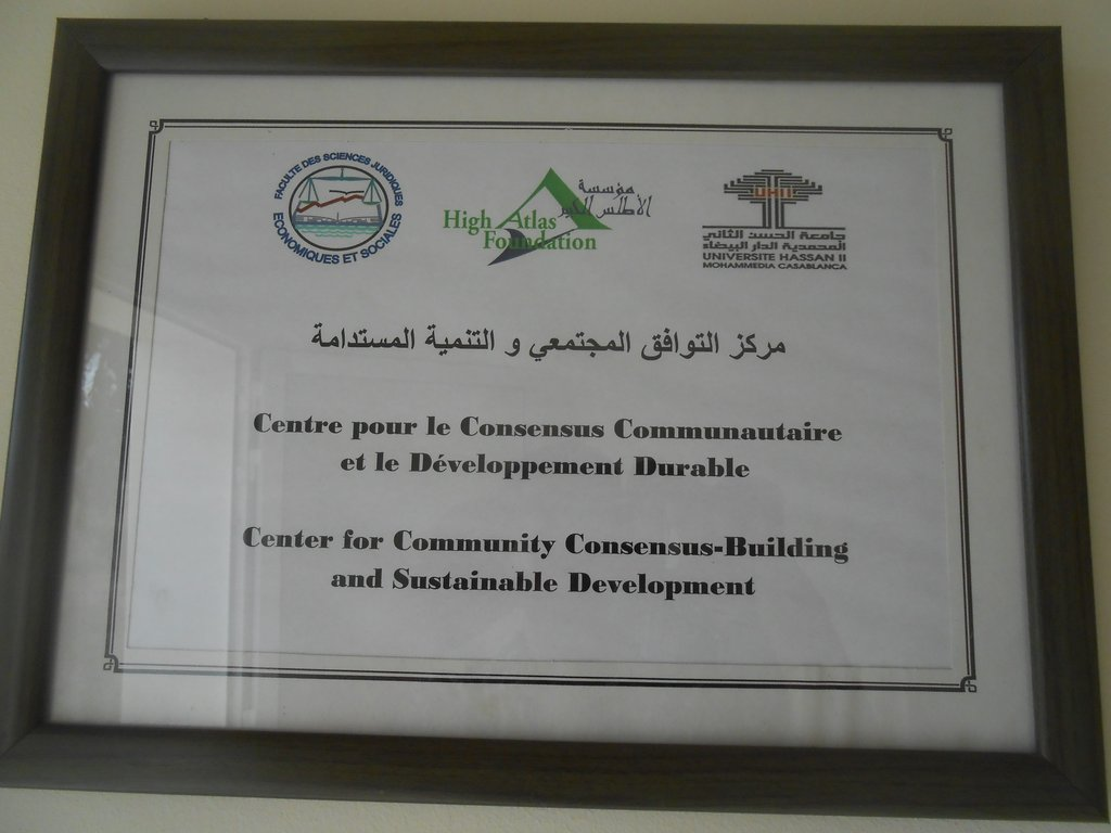 Consensus Building and Sustainable Development