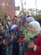 school students learn about planting trees