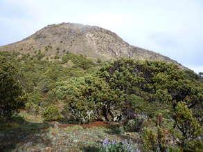 The Tajumulco Volcano