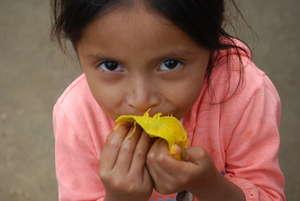 Fruit for malnourished kids