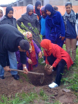 Irrigation makes fruit tree projects sustainable