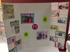 Youth bringing mediation to their high schools.