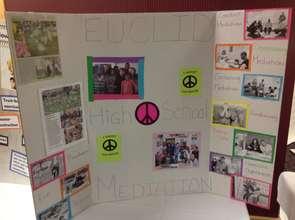 Youth bringing mediation to their high schools.
