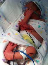 Kiki shortly after birth