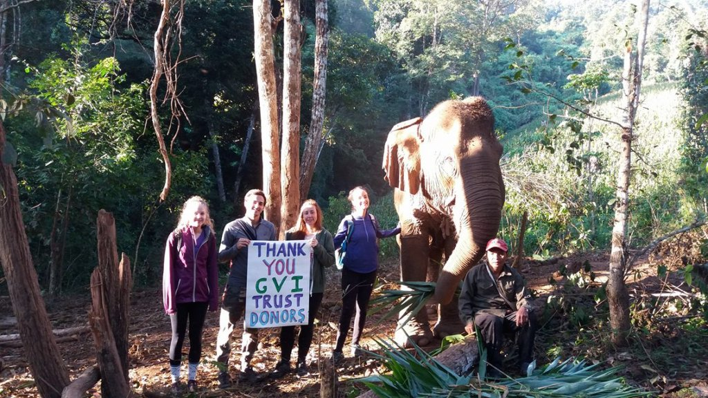 Thank you from us and the elephants!