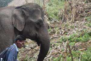Mahout Sumit side-by-side with Sah Jah