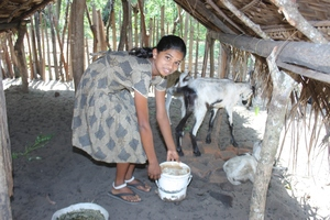 Foster child with goats