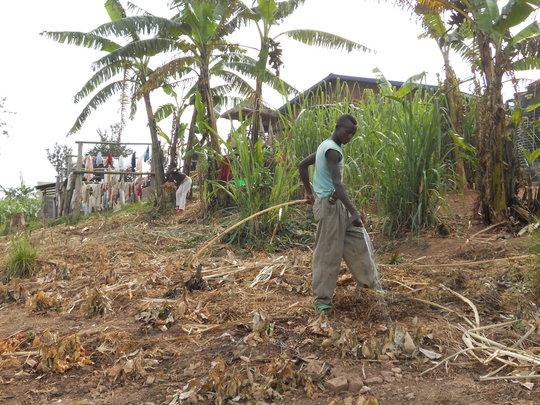 Current Irrigation Practice