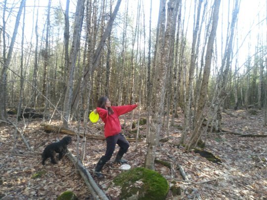 Social distance disc golf in the Maine woods