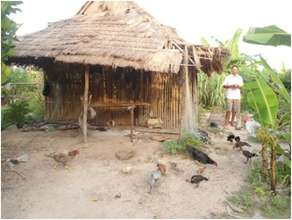 Feeding chicken by SHG member at Kroach village