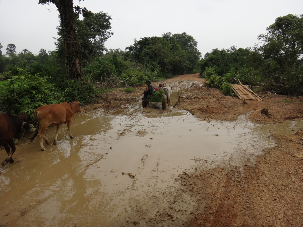 Road damaged by the floods